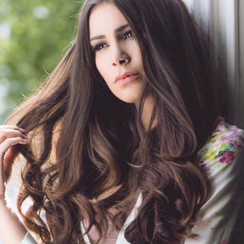 Easilocks Extensions Image